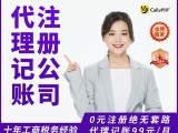 上海区网站建设,app开发,小程序,道路运输,股东变更服务