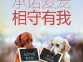 想开宠物店的来南昌英诺威用品狗粮批发优惠多多
