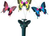 太阳能蝴蝶 遥控蝴蝶 新奇特玩具 新品遥控电动玩具 昆虫玩具批发
