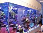 上海瑾乐鱼缸高级私人定制免费上门量尺寸设计
