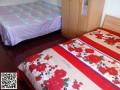 楼房,单间,床位,短租,长租30-150