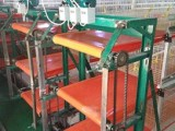 金龙鸡粪传送带,清粪带厂家,鸡粪传送带多少钱