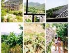 蒙山大洼风景区内 度假村整租 3000平米