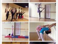 石家庄市中心少儿成人舞蹈培训民族舞 芭蕾舞 拉丁