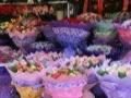 教师节鲜花礼物 大连市鲜花速递