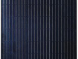 浙江省在哪能买到品质好的高效全黑组件,供应