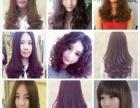 车公庙金之尚专业为您剪发、设计发型、染发、接发烫发