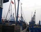 渤海南排河渔业码头出海体验一日游