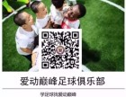 欧洲足联,福州爱动巅峰足球冬令营开练啦