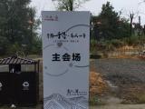 西安木质指示牌出租 木质T型板出租