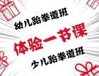 上海跆拳道 上海跆拳道培训 上海普陀少儿跆拳道培训班