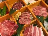 正宗日式烧肉日式料理整店筹备运营策划团队