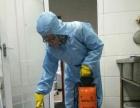 专业正规公司杀鼠杀蟑螂杀蚊蝇,有害生物防治专家