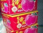又甜又脆的烟台大苹果 批发价格出售 自家种植