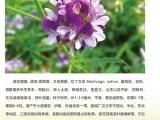 山东济南凯龙生物科技有限公司