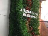 惠州花墙 植物墙 绿植墙 垂直绿化 立体花艺 主题花艺