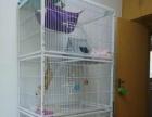 [转卖]宠物笼猫笼泰迪笼猫繁殖笼三层猫笼子养殖笼小型