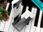 2014新款大容量移动电源充电宝 时尚钢琴20000毫安 可定制LOGO