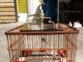 本人长期收购玉鸟,麻料,画眉,景泰蓝食盒
