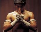 中小学生成人搏击拳击散打格斗培训教学防身术培训教学