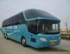 武汉到江门的客车(大巴专线)在哪坐/多久到?多少钱
