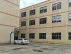 独门独院一楼6.5米带地坪漆办公装修水电齐全出租