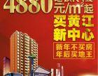 黄江中心区 地铁口物业 村委合建房 欢迎品鉴中心壹号