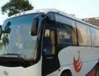 宁波到上海包车、宁波到杭州包车、宁波到普陀山包车