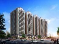 福永11号地铁口大型村委统建楼 开发商保留户型凤凰世纪