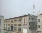新建镇 汽车站附近,工业小区内。 厂房 1800平米