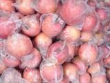 供应陕西红富士苹果价格,陕西红富士苹果产地