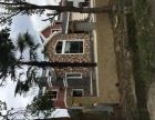 德阳自建房 别墅 小洋房 乡镇房屋 景观设计及施工