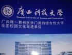 广西科技大学土木工程/工程造价/人力资源管理/金融