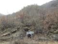内乡县夏馆镇2700亩有林权证林地对外流