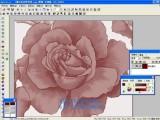 变色龙印花分色设计软件V4.7 带加密锁
