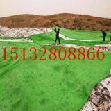 绿色盖土网价格 安平绿色盖土网价格 优质绿色盖土网厂家批发