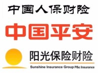 办理视频联网报警财产保险服务