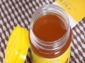 蜜蜂哥哥蜂蜜 蜜蜂哥哥蜂蜜加盟招商