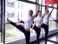 厚街舞尚界舞蹈培训