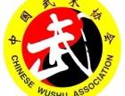 河北省武魂武术青少年俱乐部暑假班开始报名啦!