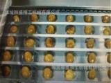 鲜蓝莓盒真空包装机批发价格低  厂家直销