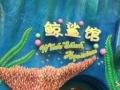 珠海长隆海洋王国-海泉湾温泉2日游