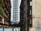 禾祥西 厦禾路 中山医院二市BRT附近 正规清爽一房一厅 好