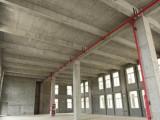 小面积 有产权 独栋标准工业厂房 可按揭 配套好