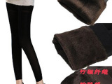 新款女式珍珠绒时尚女士秋冬款打底裤新款女式细腿冬季打底裤批发