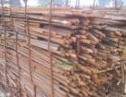 建筑废料、金属回收、废旧电线电缆、库存积压等