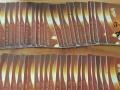 长春95-97回收欧亚购物卡现金卡。卓展卡。超市卡.油卡
