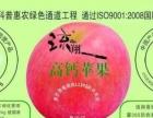 科普中国乡村e站加盟 种养殖 投资金额 1万元以下