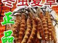 鞍山回收冬虫夏草13699122221鞍山出售买卖冬虫夏草