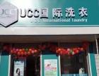 UCC国际洗衣干洗店加盟1-5万元代言人温碧霞